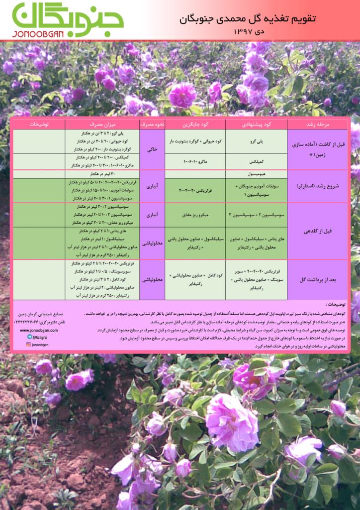 تقویم تغذیه گل محمدی جنوبگان